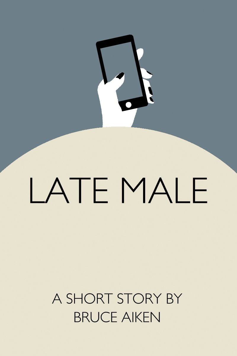 book cover for short story
